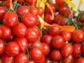 2-piennolo-tomato