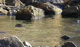 free thermal baths ischia